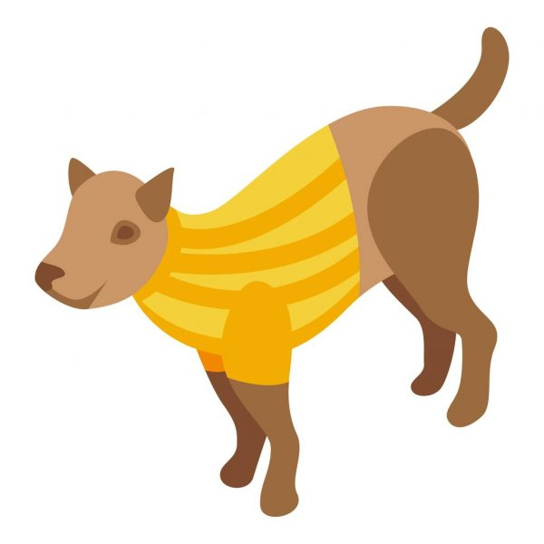 vêtements pour animaux