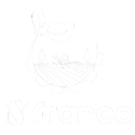 MS-FRANCE-logo-docshipper-partner