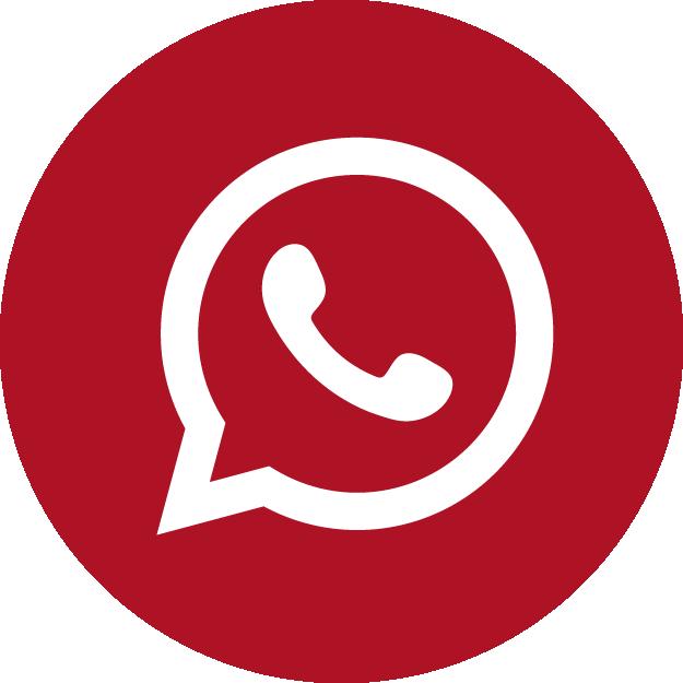 contact-whatsapp-docshipper