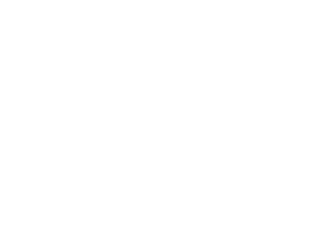 docshipper-logo-transparent-white