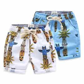 Beach-Shorts-e2woo